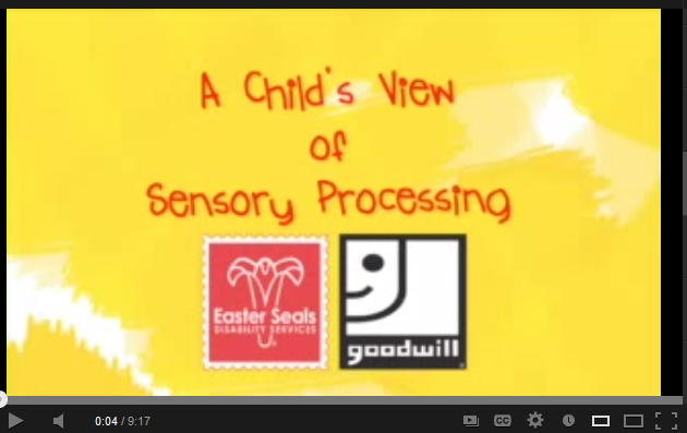 Child's View of Sensory Processing